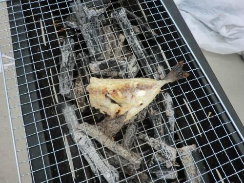 和歌山マリーナシティ2011_釣った魚焼き上がり