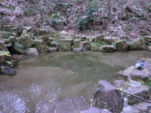 初木もれ陽の森_つかみ取り池