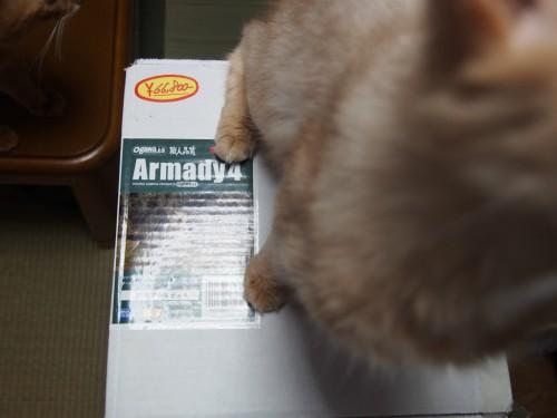 アルマディ4の箱と猫